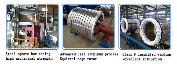 Squirrel Cage High Voltage Motor