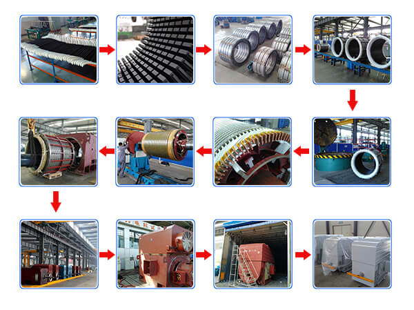 Hot Selling High Voltage Motor