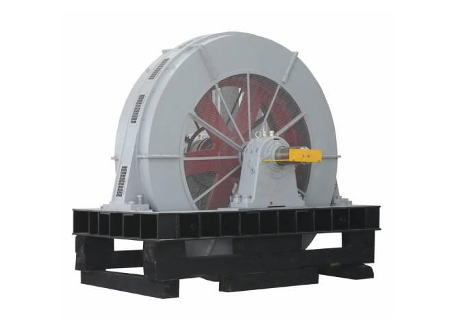 Large Synchronous Motor