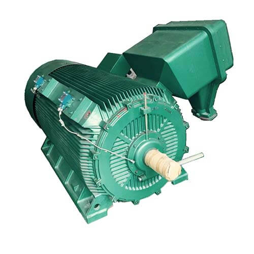 High Voltage Induction Motor