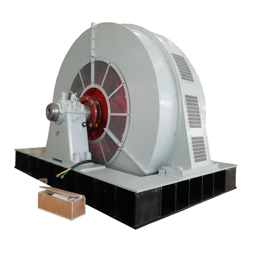 Large synchronous electric motor